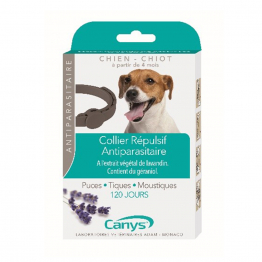 Colliers antiparasitaires insectifuges chien chiot 60cm Canys