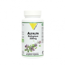 VIT'ALL+ ALFALFA 500MG BIO 60 GELULES