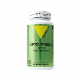 VIT'ALL+ CHRYSANTHELLUM 500MG 60 GELULES
